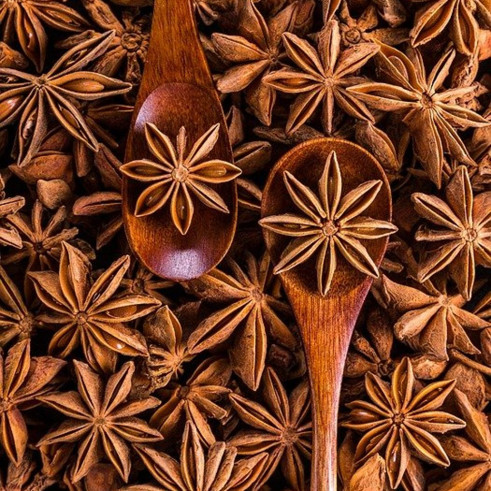 HOW TO GROW STAR ANISE   10 ULTIMATE STEPS